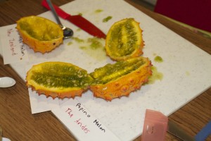 Horned melon from New Zealand