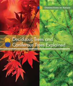 Deciduous and Coniferous Trees Explained cover