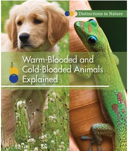 warm-blooded-and-cold-blooded-animals-explained-cover